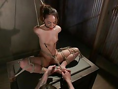 Kristina likes to sit comfortable and she was a fucking whore with no respect until this guy putted his paws on her. Now she's all tied up has clamps on her nipples that are pulling those small tits and a ball is used to gag her pretty mouth. Kristina sits there and gets whipped and punished, she deserves it.