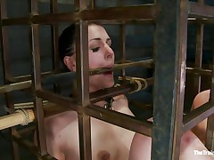 She was a bad girl and they had to put her in a cage and reeducate her. Now she is receiving what she deserves, a hard spank and some well deserved humiliation. Of course her shaved cum asking cunt is not to be neglected and the executor uses a vibrator to taunt her a bit. Wanna she the rest of it?