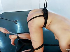 This brunette is one hot piece of ass and she needs some punishment. The blonde slut tied her up good and made her stay bent over so she could enjoy that sexy booty. She spanks her ass and shocks it before inserting a plugged in metal sex toy. She endures it all the way as the mistress penetrates that sexy butt